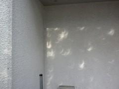 ビルの壁に映った三日月型の木漏れ日(7時41分撮影)